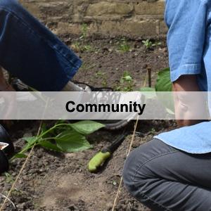 Program Header - Community